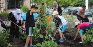 aménagement du jardin communautaire