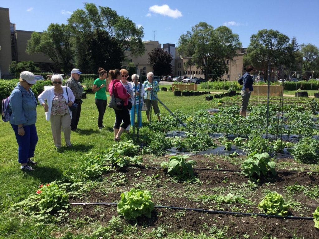 La Table de développement social décide des orientations des Jardins Skawanoti, projet d'agriculture urbaine.