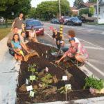 On cultive dans les plates-bandes pour nourrir la communauté.